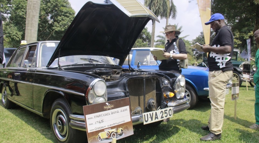 Vintage car show preparations in high gear